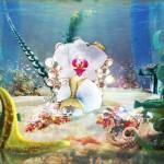 mermaid2016pq