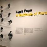 Lygia-Pape