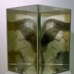 Le baiser mis a nu, d´aprés Duchamp